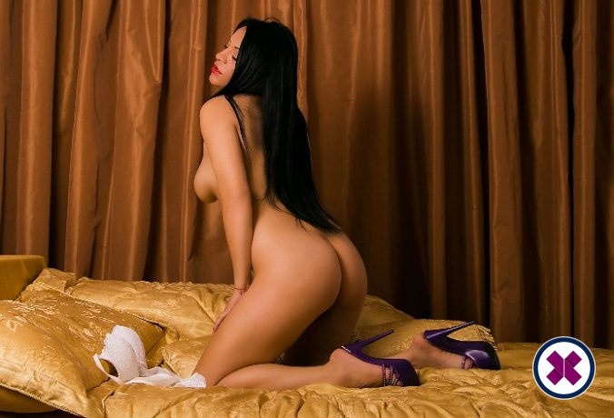 Book a meeting with Alisa Sexy in Stockholm today