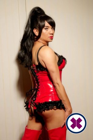 Nelly TV is a sexy Brazilian Escort in Leicester