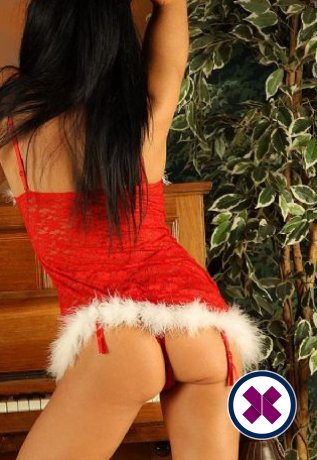 Emily Wade is a super sexy British Escort in Manchester