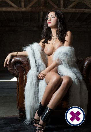 Charlotte is a hot and horny Italian Escort from Amsterdam