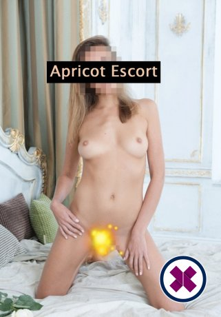 Lena is a hot and horny German Escort from Köln