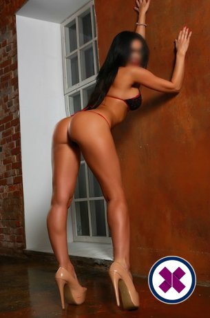 Nicole is a super sexy British Escort in Brighton