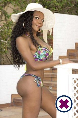 TS Leila Diniz is a super sexy Brazilian Escort in Westminster