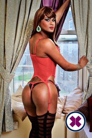 Meet the beautiful TS Clara Lamour  in Newcastle  with just one phone call