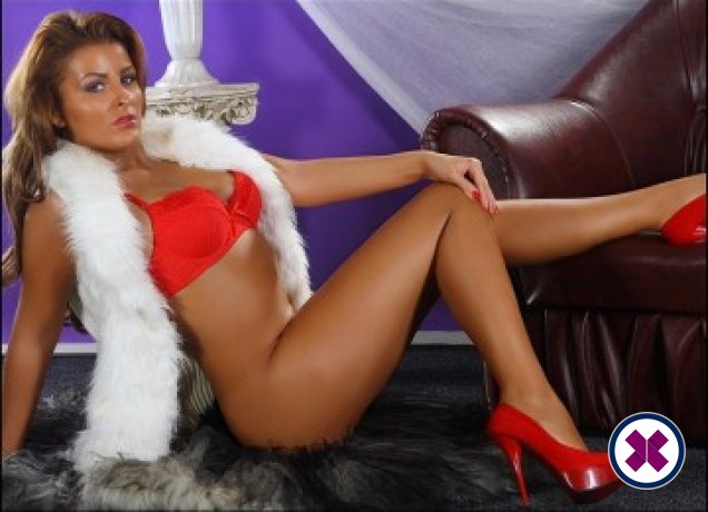 Anna The One is a very popular Czech Escort in Westminster