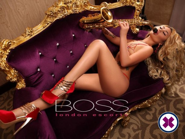 Diva is a top quality Russian Escort in Camden
