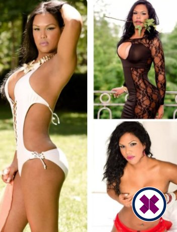 Leena Swallow TS is a high class Colombian Escort Exeter